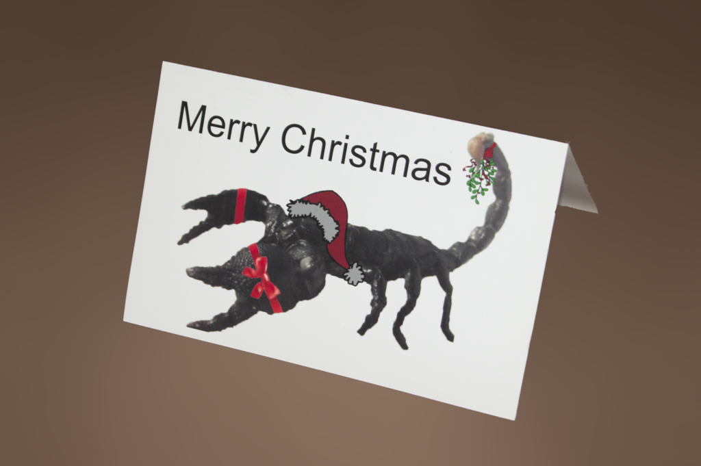 Most recent image: $50 Custom Holiday Cards (20) w/ envelopes