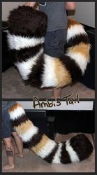 Ambi's Tail!