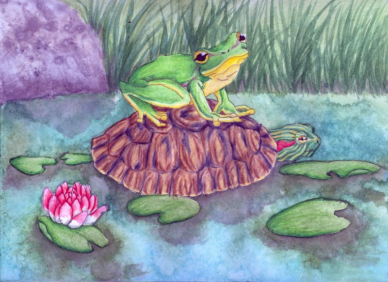 Most recent image: #61 Fairytale: The Frog and The Turtle
