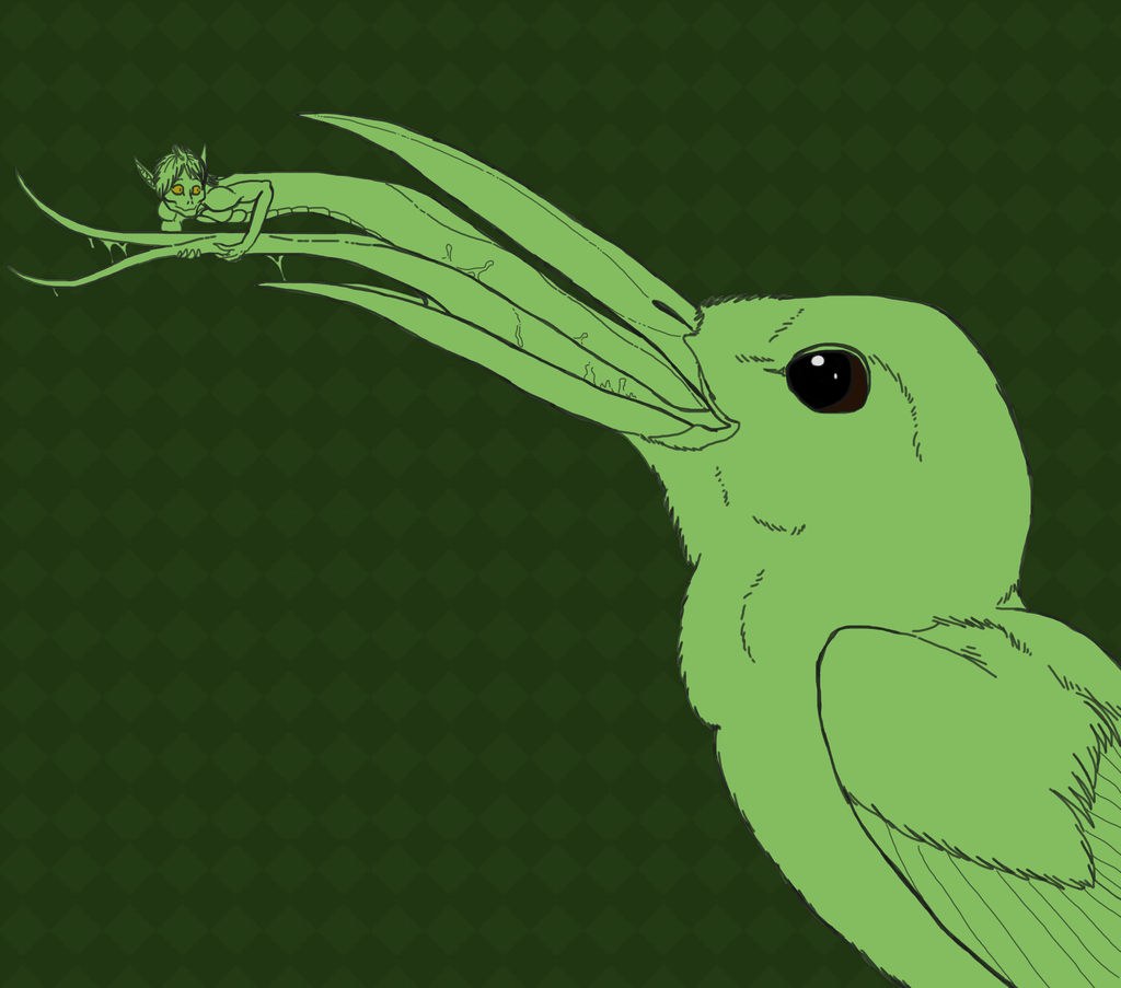 Hummingbird Nom Sketch