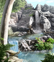 Pond Paradise