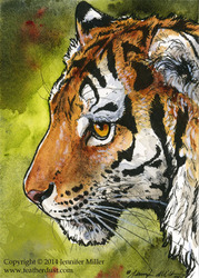 Amur Tiger Miniture Painting