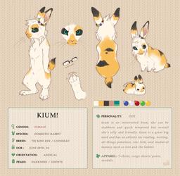 Kium 3.0 Reference Sheet