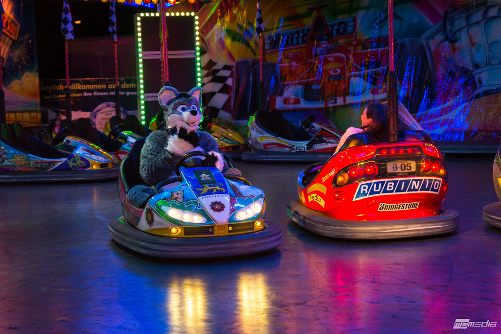 Arco driving the bumper cars