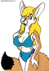 (2006) Sandi's Swimsuit