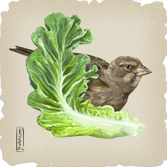 Smallest Lettuce