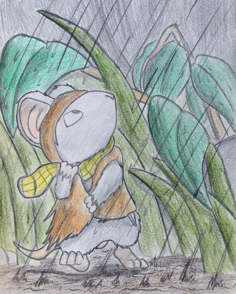 Rainmouse