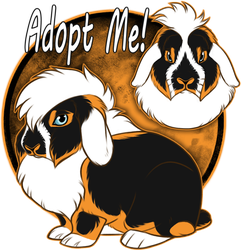 Lion Lop Adopt [$25 / OPEN ]