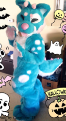 Glimmer Bodysuit and Feet Paws