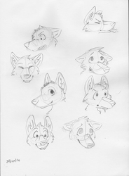 Quick Expression Sketches