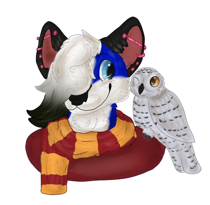 COM: wolfgirl9 2