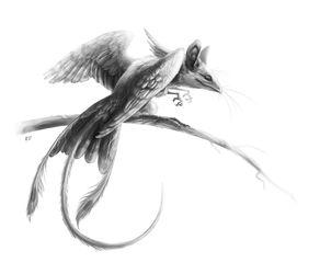 Mouse-bird from GeneStorm