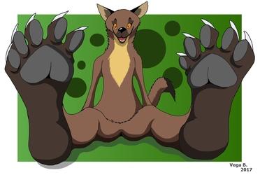 Marten paws