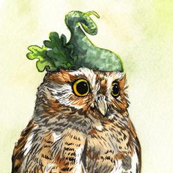 Strange Elf Owl