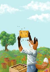 [Commssion] Beekeeper Fox