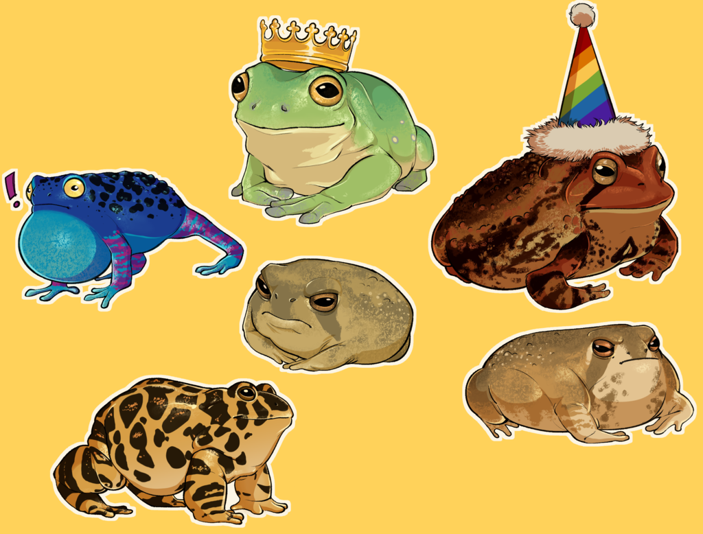 Most recent image: frogs and one (1) toad