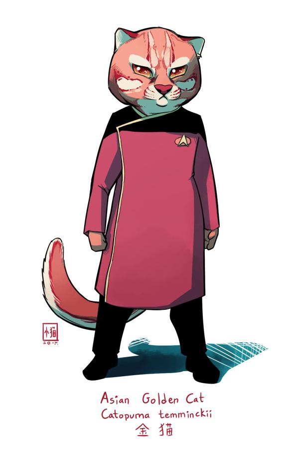 Asian Golden Cat - dress uniform