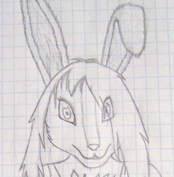 Maike Rabbit (September, 2010