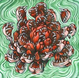 Dog Lotus