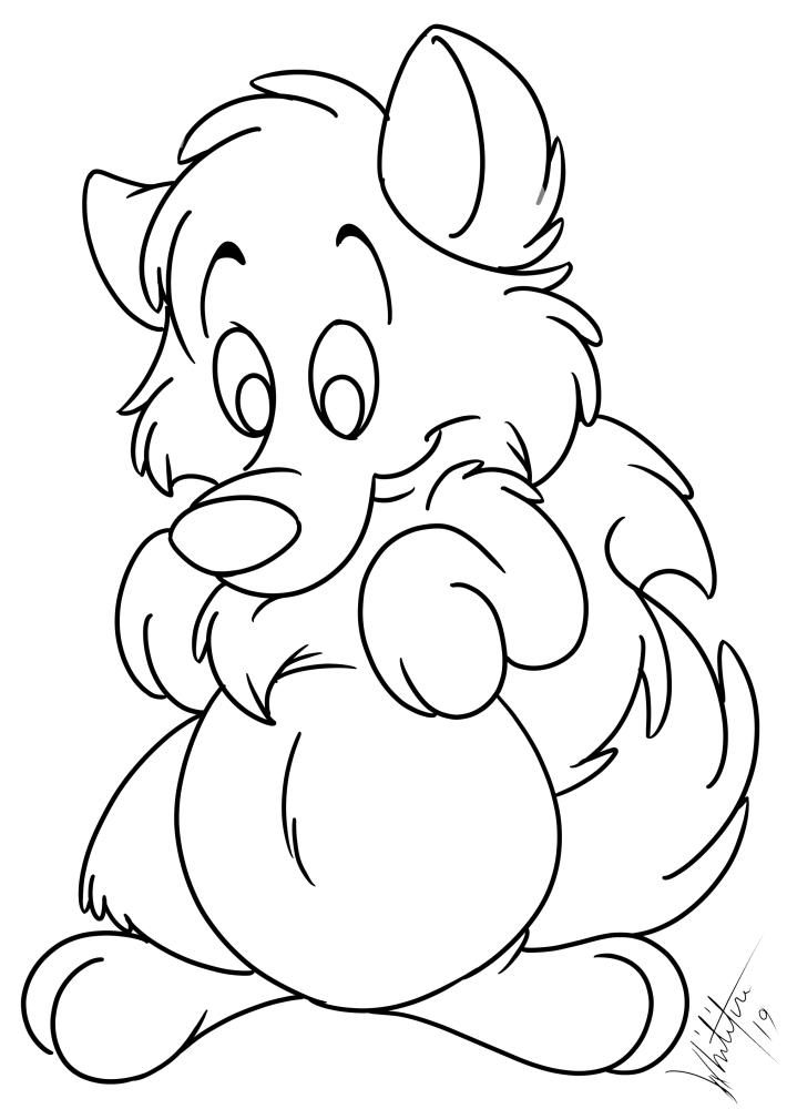 BeanyBeanFox looking at his tummy