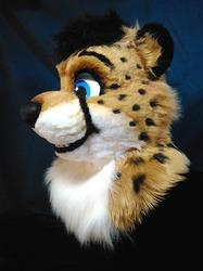 Spotty Kat (Img-1)
