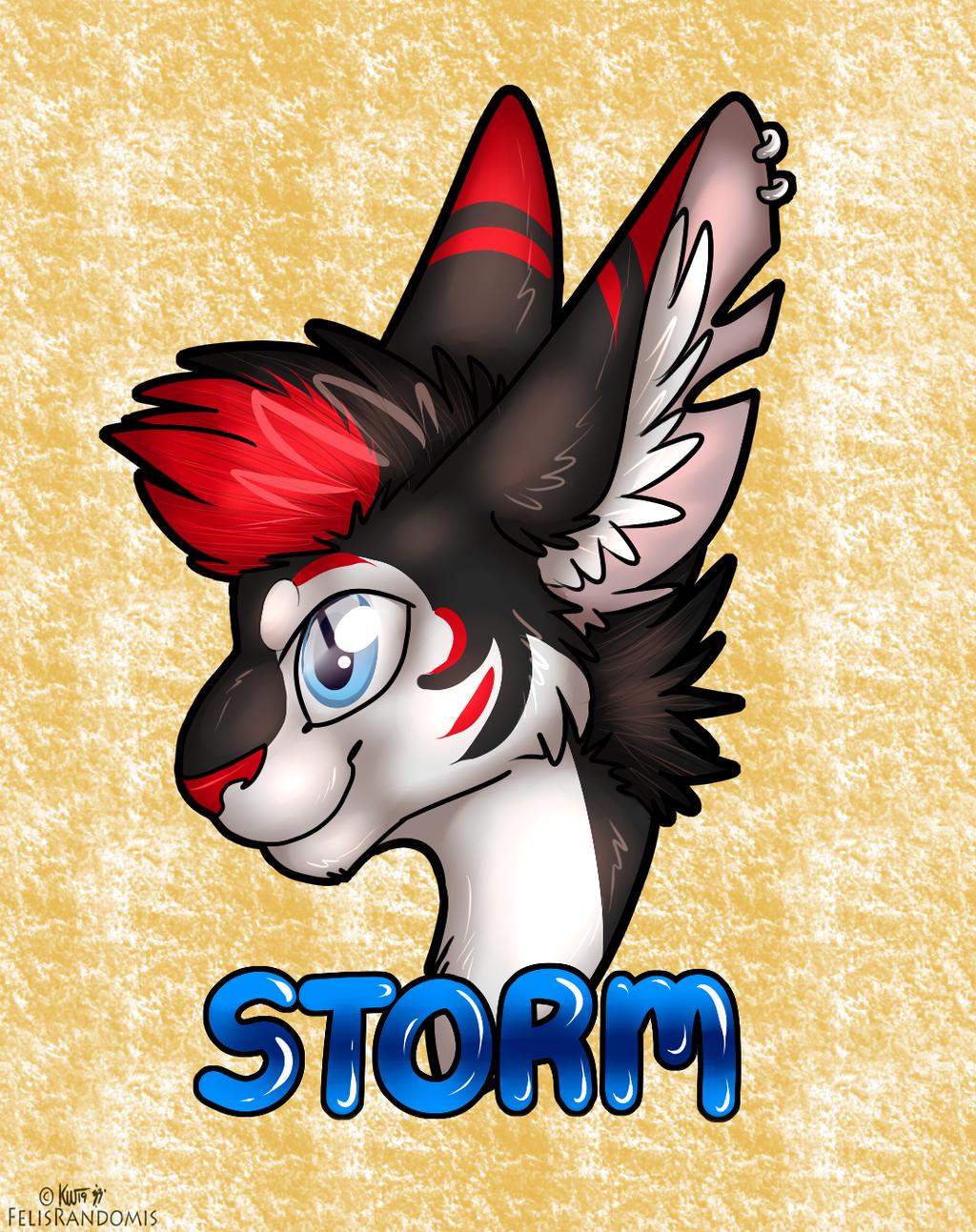 Storm Badge