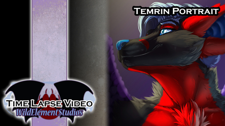 [VIDEO] Painted Portrait - Temrin