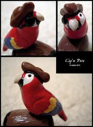 Cap'n Pete (Details)