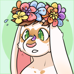 [personal] hippie bunny