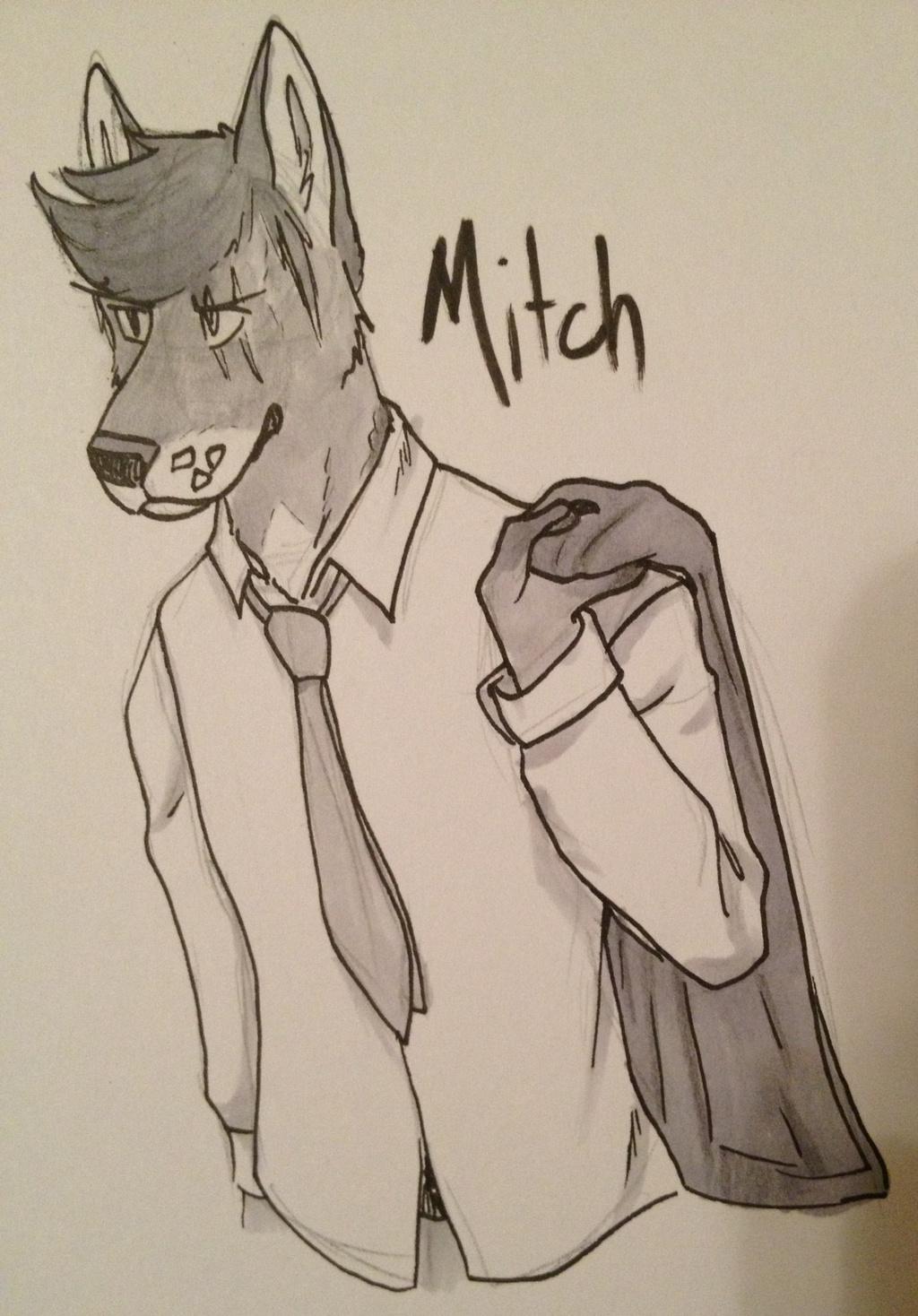 Mitch (trade)