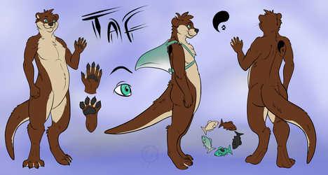 Taf Otter Ref Sheet by Draaz