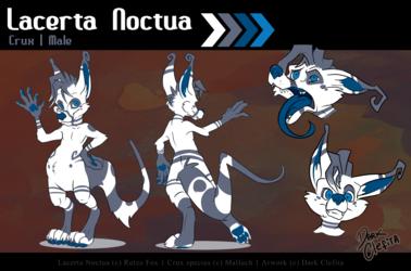 Lacerta Noctua - Ref sheet