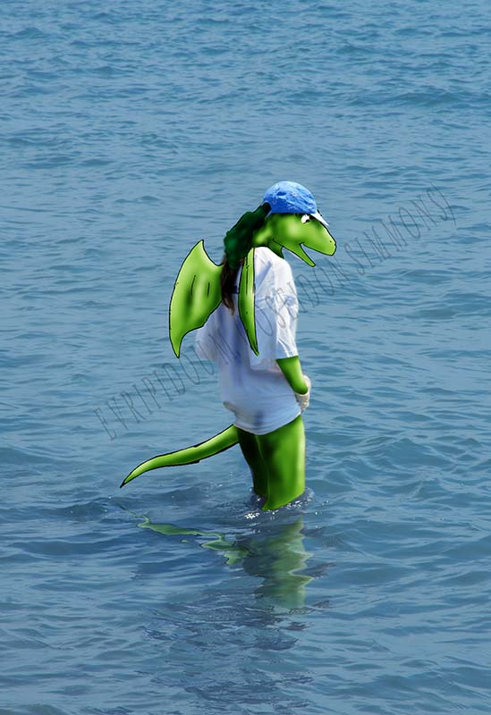 dragon isle project-Mirus dragon girl at the beach