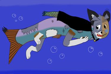A very Virmirfish swimmer