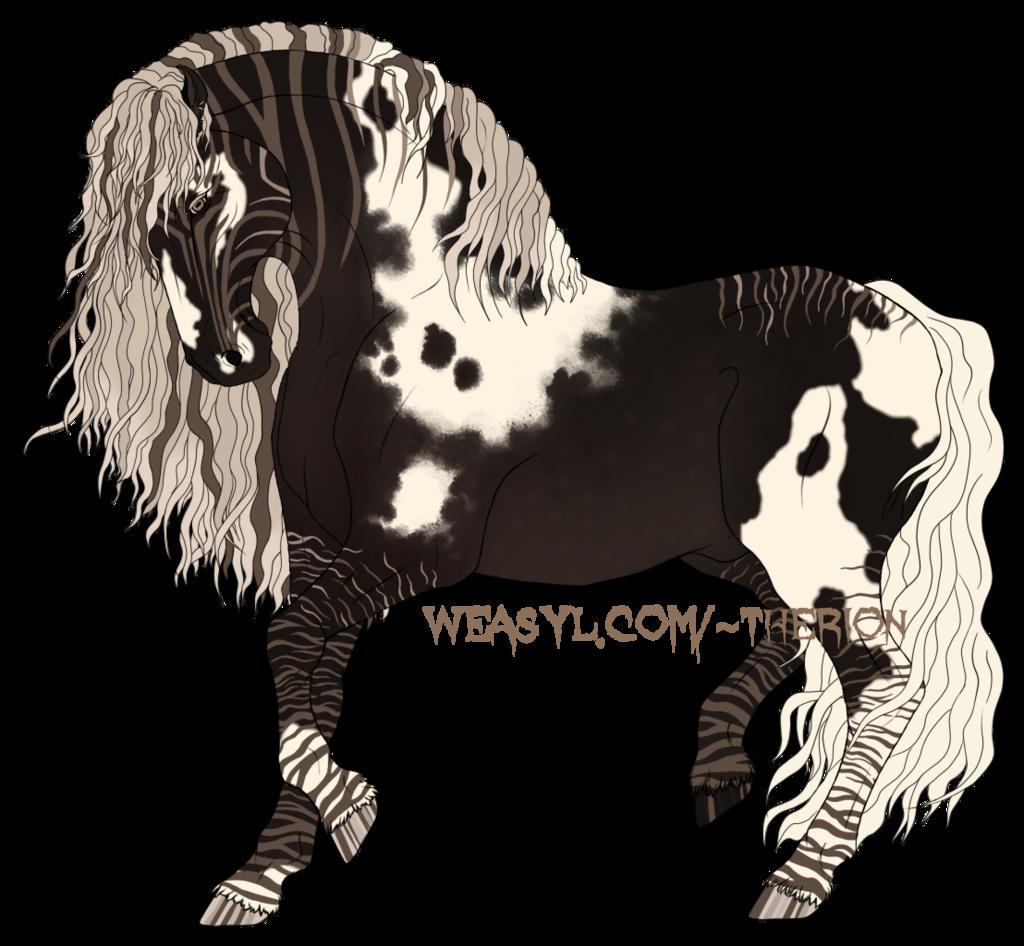 Silver Black Zebra Tobiano (Breeding)(Sold)