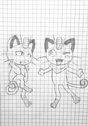 two kinds of kitties