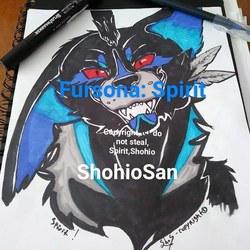 Spirit commission