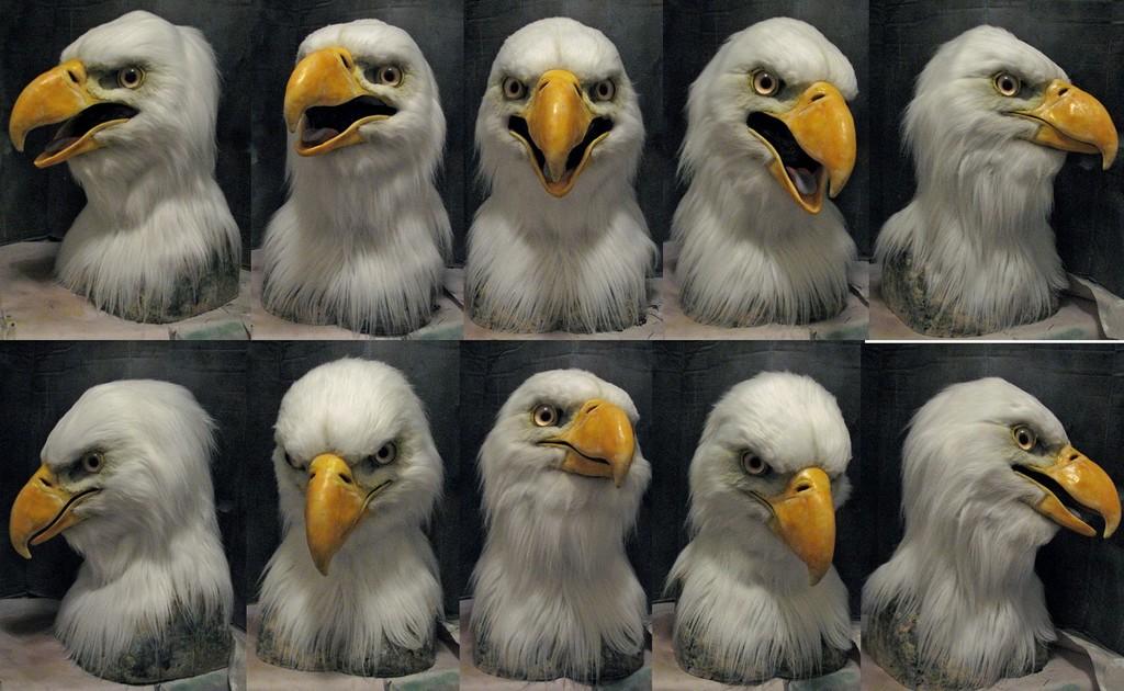 Bald eagle 2.0