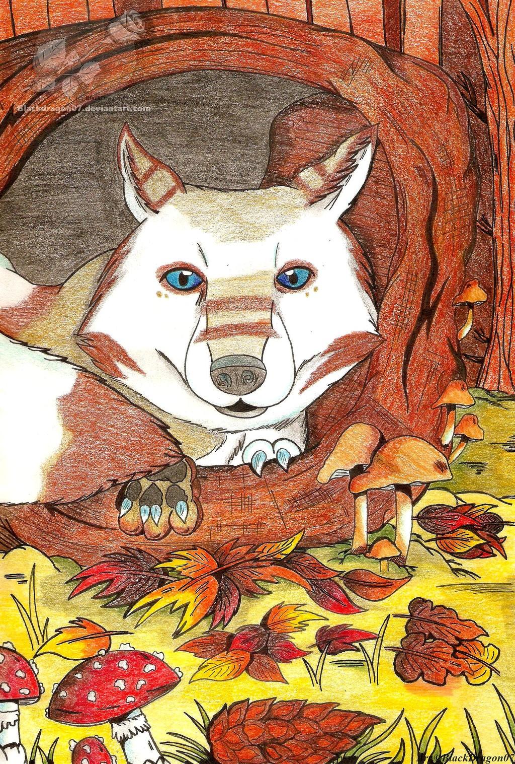 Un renard en Automne ...