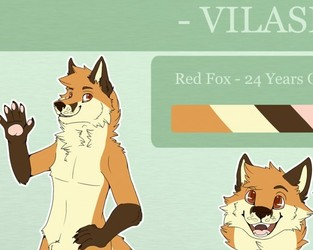 Reference Sheet Commission: Vilasio