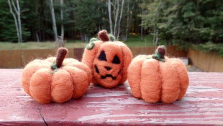 Needle Felted Pumpkin Patch Set