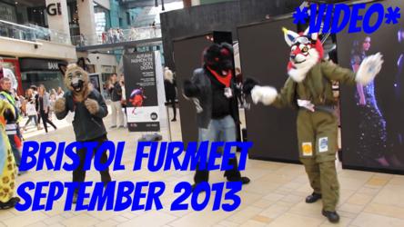 Bristol Furmeet September 2015 Video