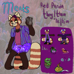 REF: Meats the Red Panda