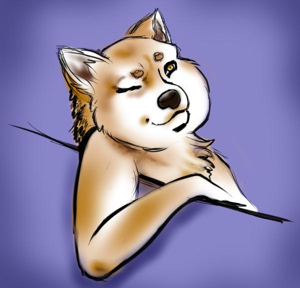 Shibe Sketch