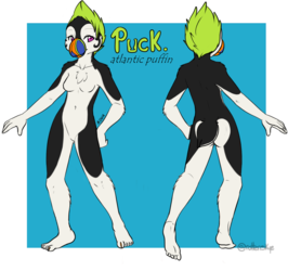 Puck the Puffin