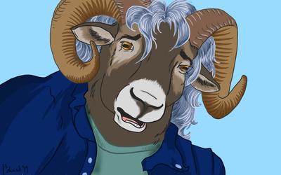 Bad Idea Sheep