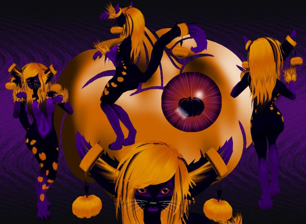 Samhain, the Halloween Kitten