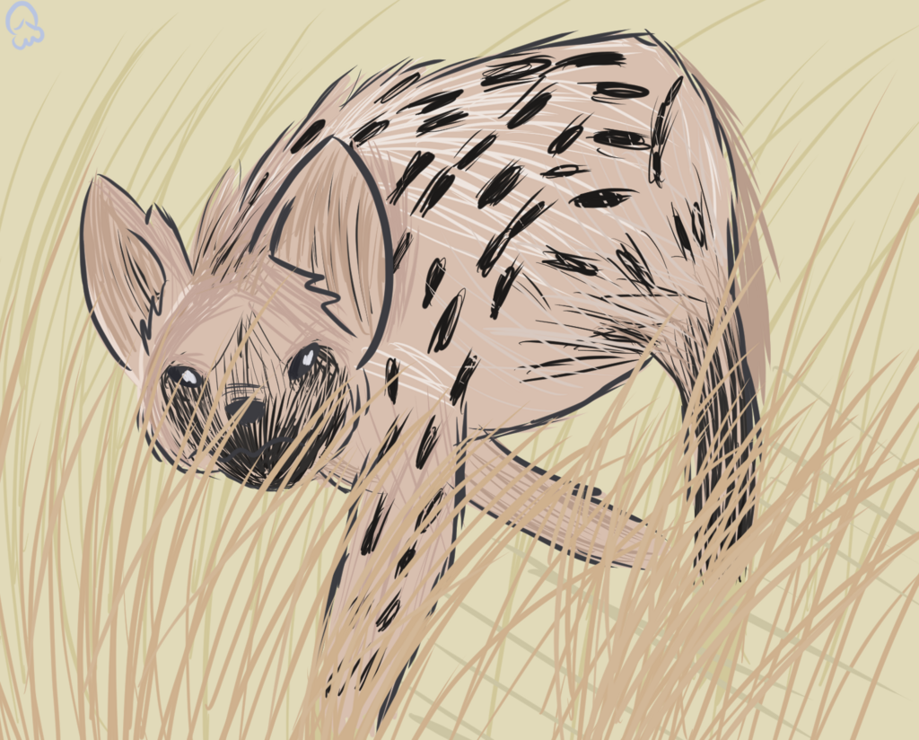 Most recent image: A creature in the brush