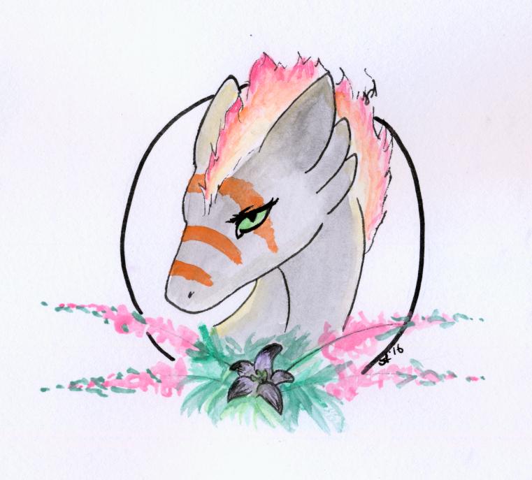 Most recent image: Hato so pretty