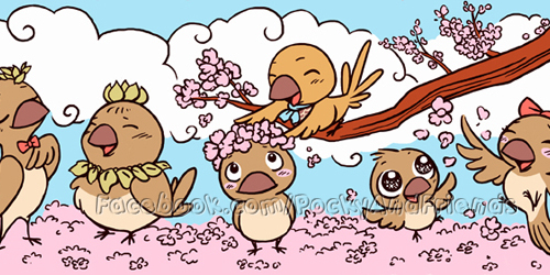 Finches and sakura flowers in spring